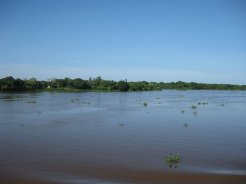 Impressions from Pantanal